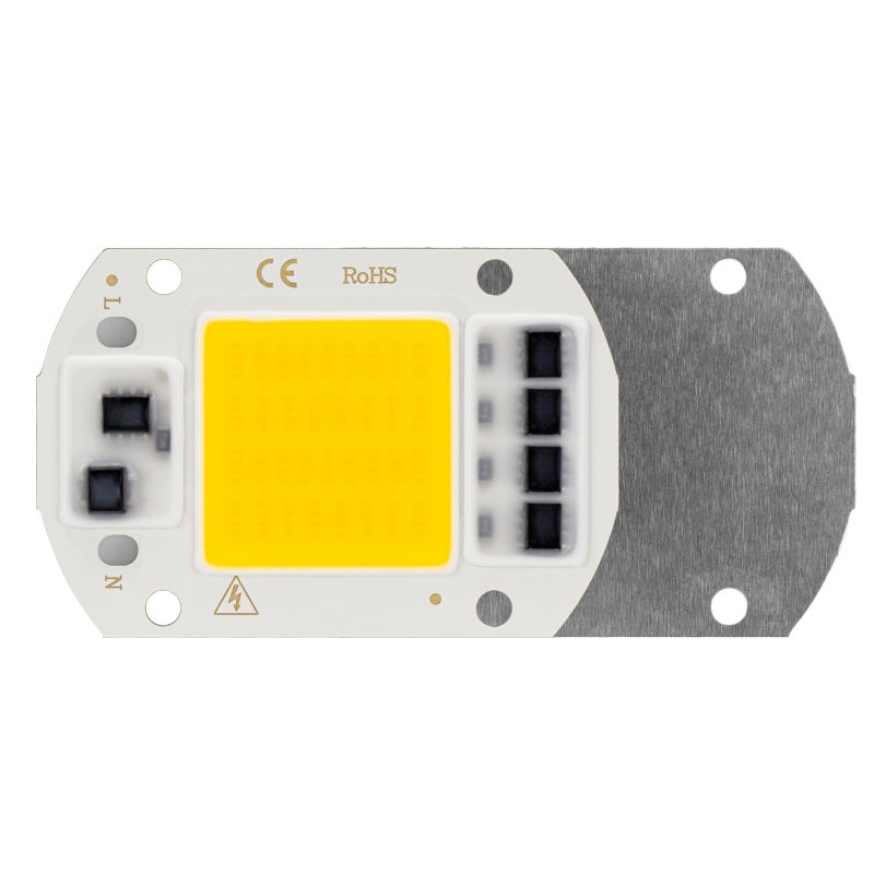 10PCS LED COB Chip AC 220V 50W 30W 20W Smart IC No Need Driver High Brightness LED Light Beads DIY For Flood Light Spotlight