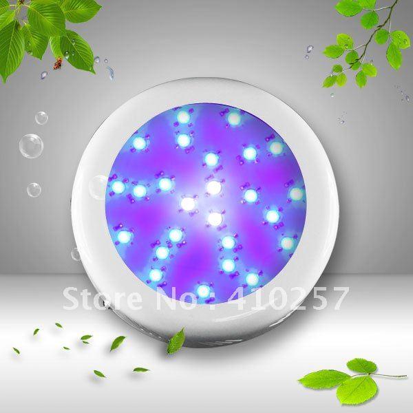 ФОТО Free Shipping All Blue Led Grow Light 75W(25*3W) royal blue 450nm vegetabling lighting