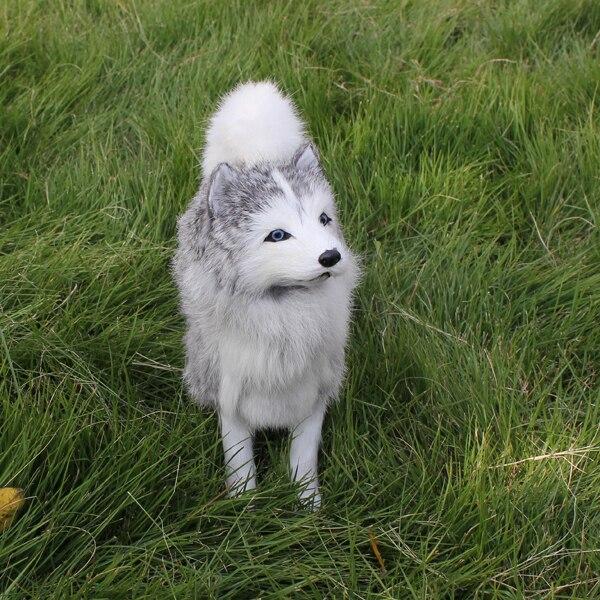 מבריק גורי האסקי סיבירי כלב אופנה באיכות גבוהה למכירה ב-גורי האסקי FY-98