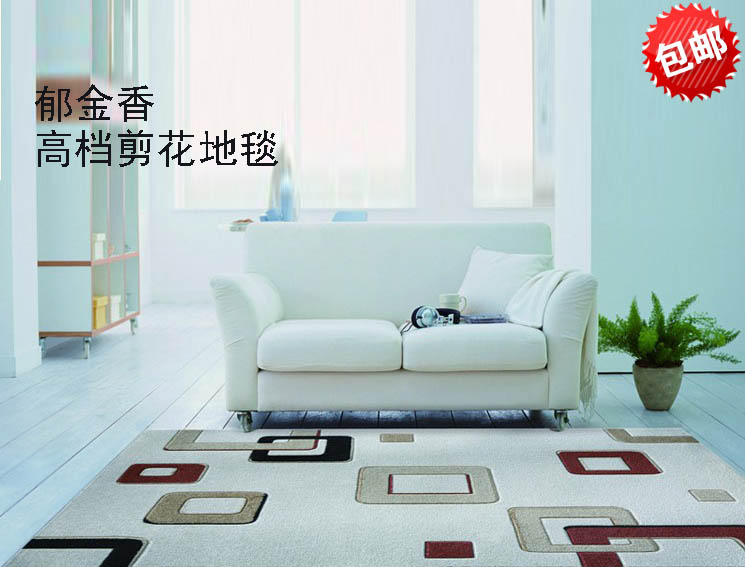 Carrier carpet living room coffee table doormat blending flower brief chinese style