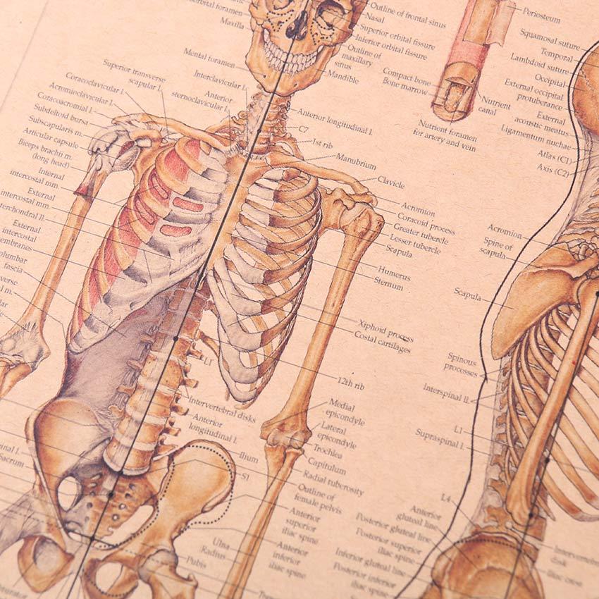 Baratos TIE LER Home Decor Poster Pintura Mural Retro Esqueleto ...