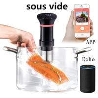 Sous Vide Low Temperature Vacuum Slow Cook Witty Can Wifi Cooking Good Molecule Delicious Food Organ Food Machine OEM