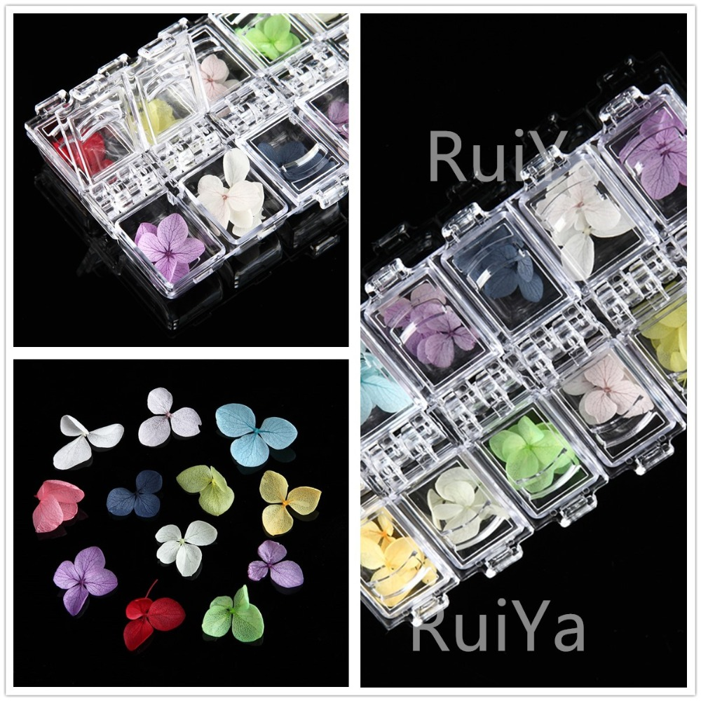 12 Color/Box Nail Art Nature Dry Flowers Real Floral Set Gel Polish Tip 3D DIY Floral Slices Manicure Decoration Gel Polish Kit