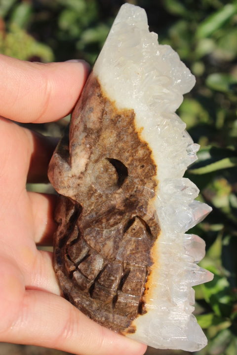 321g Tibet's Natural Clear Quartz Crystal Skull Specimen   A1