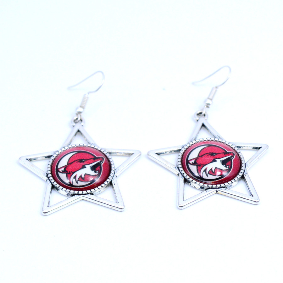 Earrings NHL Phoenix Coyotes Charms Dangle Earrings Sport Earrings Ice Hockey Jewelry for Women Birthday Party Gift 5 pairs
