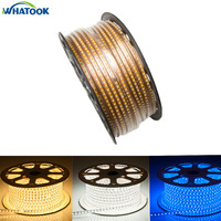 Copper wire 50M100M led strip 110V 220V SMD 3014 120leds/M IP67 Waterproof outdoor garden light warm white Ceiling Home Decor