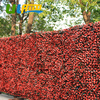 ULAND Artificial Boxwood Hedge Plastic Privacy Garden Fence Plastic Plants Outdoor 20 X20 Gardening Decorations And