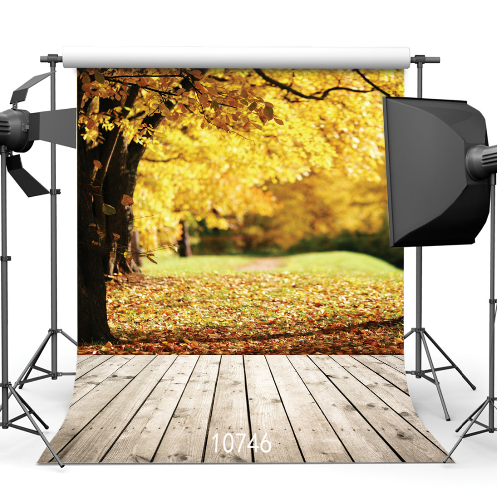 SJOLOON autumn photography background fall leaves and wood ...