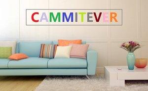 Image 5 - CAMMITEVER 6 размеров кофейного цвета, мягкое одеяло, домашний текстиль для воздуха/дивана/постельных принадлежностей, фланелевое одеяло, зимнее теплое мягкое постельное белье
