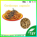 Natural cápsula de Cordyceps sinensis extrato em pó 500 mg * 200 pcs 10:1