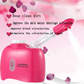 Hot sale hot Facial Steamer Facereplenishment humidifier Beauty Salon Skin Care Instrument Machine