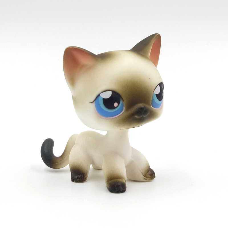 Real Rare Animal Pet Shop Toys Standing #5 Grey Short Hair Cat White Siamese Kitten With Blue Eyes Free Shipping