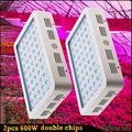 Wholesale 2pcs Double Chips LED Grow Light  600W Full Spectrum Lamps for Plants & Flower Hydropnics Grow Tent/box, Greenhouse