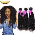Mongol excêntricas encaracolados cabelos virgens 3 pacotes mongolian virgem remy cabelo, sedoso mongol afro crespo cabelo crespo cabelo humano virgem