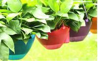 Бесплатная доставка, 2 шт., ленивый горшок, Петуния Hybrida специальный горшок, подвесные корзины цветочные горшки, петунии, smart Горшок, Бесплатн...