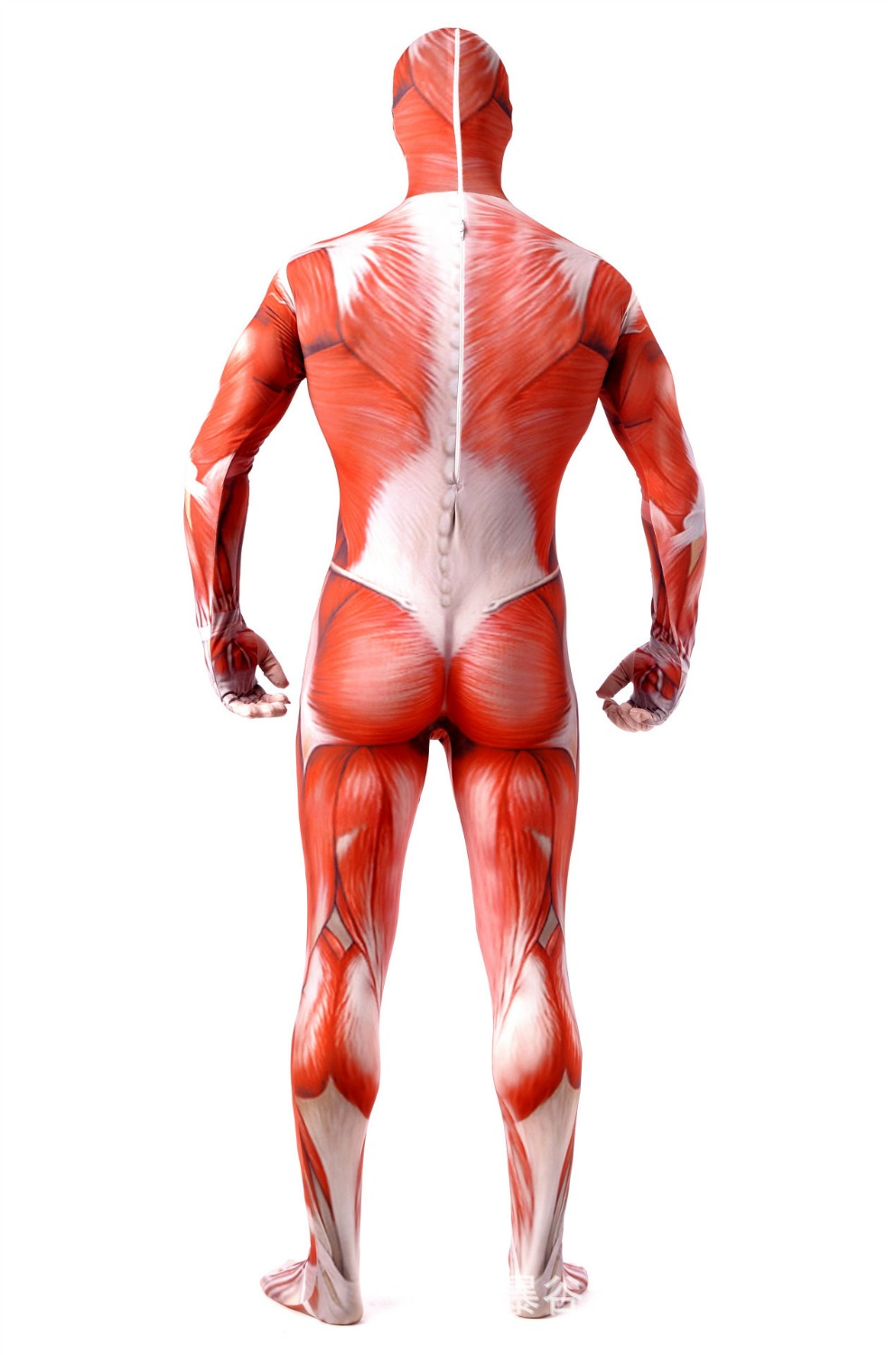 Aliexpress Buy Attack On Titan Men Cosplay Costumes Titans Muscle Muscular Suit Bodysuit Bertolt Hoover Lycra Flesh Zentai Halloween Cost S 2xl