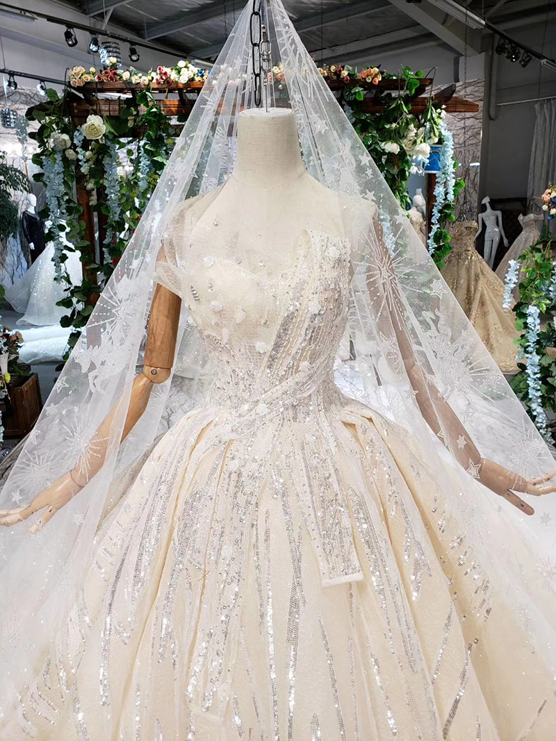 HTL388 boda special strapless wedding dress with wedding veil sleeveless sexy princess bridal dresses shiny robe de mariage 2019 (4)
