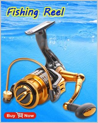 2 fishing reel
