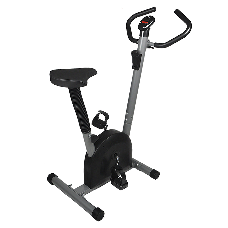 Exercise Cardio Bike Workout Stationary Bicycle For Home Indoor Health Fitness MAYITR