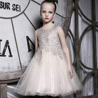 2017 Summer Girls Clothing Baby Girls Dress Party Princess Plaid Wedding Dress Dresses for Girl Frozen Vestidos Infantil Elsa