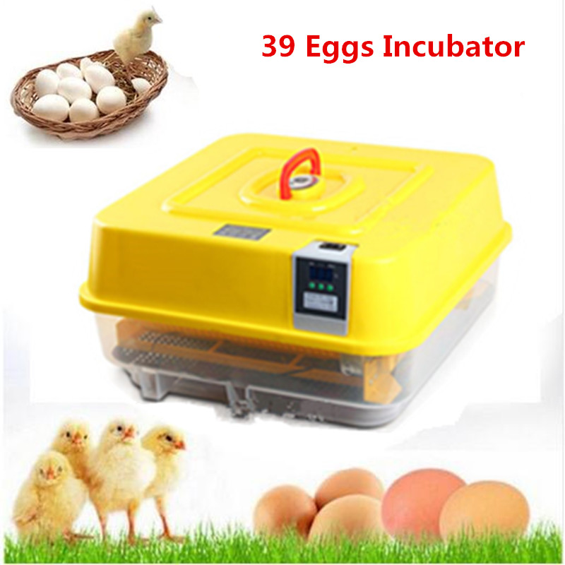 Fully automatic incubator for chicken ducks goose quail eggs hatchery mini household poultry brooder digital display