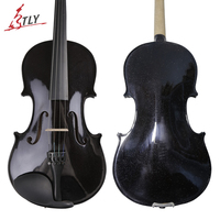 TONGLING Brand Student Beginner Black Violin High Grade Solid Wood 4/4 Violino Fiddle w/ Full Set Accessories