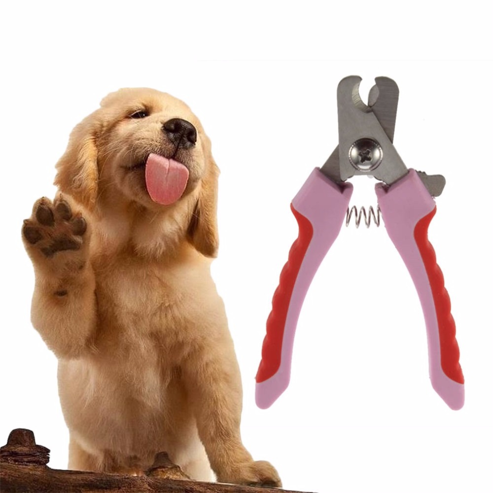 TAILUP Professional Pet Nail Clippers Cutter for Animal Dogs Cats Pig Birds Claws Scissor Cut Pet Grooming Scissors