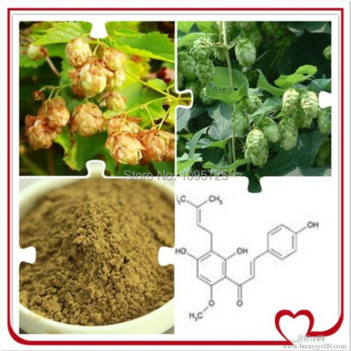 ФОТО Herbal products wholesaler Supply Hops flower extract  powder
