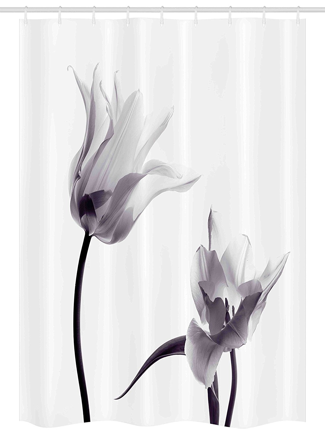 Black and White Stall Shower Curtain Close Up Digital Saturated Tulip Petals with Minimalist Faded Effect Bathroom Decor Set