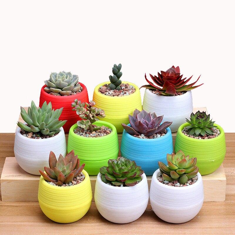 Flower Pots Mini Flowerpot On Desk Garden Unbreakable Plastic Nursery Pots For Succulent Plants JJJYL80