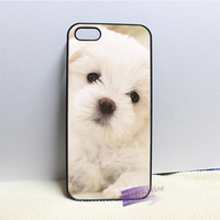 Maltese Dog Puppy Fashion Cell Phone Case Cover For Iphone 4 4s 5 5s 5c 6