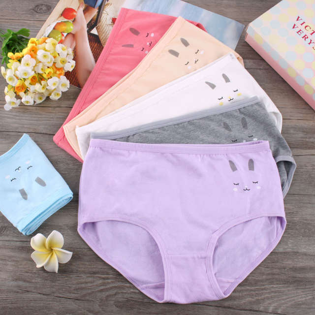 a6287aeabb placeholder Breathable cuecas cotton underwear panties lace summer knickers  Japanese Sweet Girls Briefs hare low waist underpants
