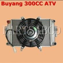 Buyang Feishen 300CC ATV Quad радиатор и вентилятор электромотор в сборе