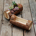 Handwork Wooden Succulents Combination Flowerpot Chinese Fir Cylinder Plants Pot