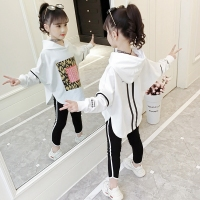 Girls Sets Spring Children Suits For Girls Clothing Sets Casual Kids Sportswear Cotton Hoodies Print Sweatshirts+Pants Trouser