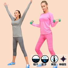2 Piece – (Shirt & Legging) Yoga Fitness Sport Suit