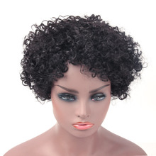Salonchat Curly Human Hair Wig 100% Afro Wig Short Human Hair Wigs For Black Women Natural Brazilian Remy Hair