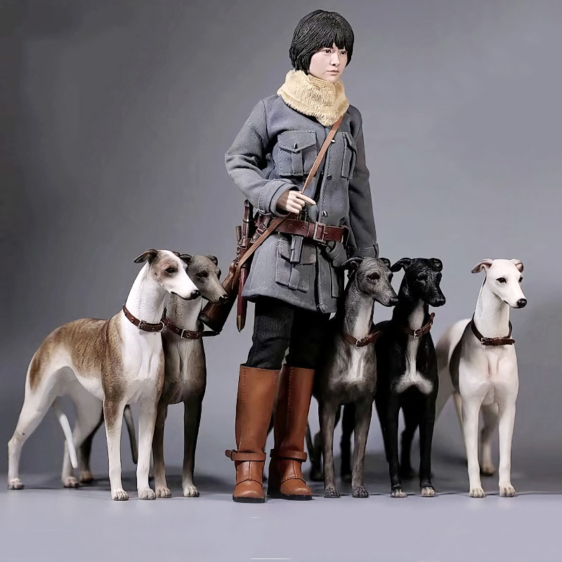 6 Colors Mr.Z <font><b>1/6</b></font> <font><b>Scale</b></font> No.14 Greyhound Animal <font><b>Dog</b></font> Model Toy for 12 inches Action Figure Accessories Collections image