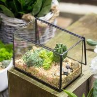 NCYP Rectangle Clear Glass Geometric Terrarium Box Indoor Tabletop Micro Landscape Succulents Fern Moss Plant Flower Pot Planter