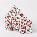 Nova Marca de Moda Floral Laços para Homens Moda Casual Impresso gravata Gravata Borboleta Do Vintage Vermelho Azul Padrão Floral Do Laço Do Pescoço de Algodão laços