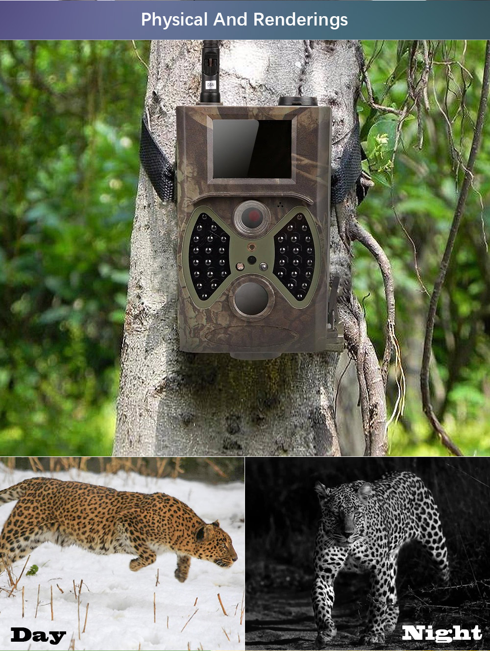 Câmera selvagem infravermelha do e-mail da câmera