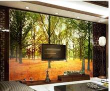 Park forest woods autumn season leaves leaves TV background wall 3d wall murals wallpaper(China)