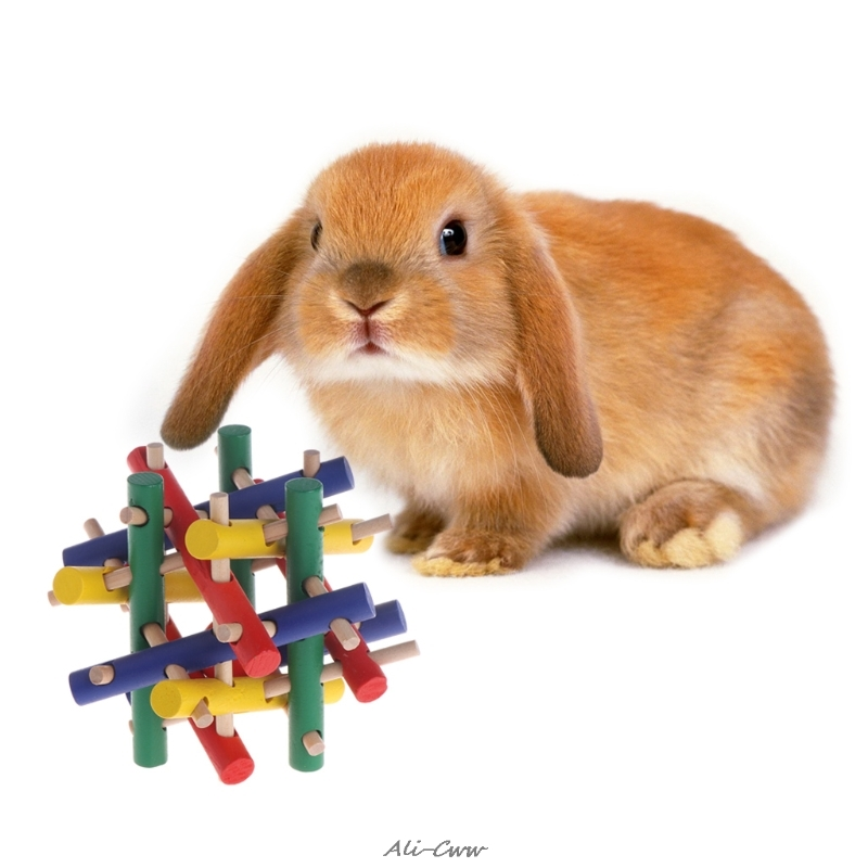Pet Toy Colorful Wood Safety Knot Nibbler Chew Bite For Rabbit Animal Kid Adults Nibbler