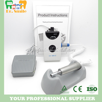 Dental Portable Mini Micro Motor Brushless Machine Electric Motor With One Straight Handpiece Low Speed Nail