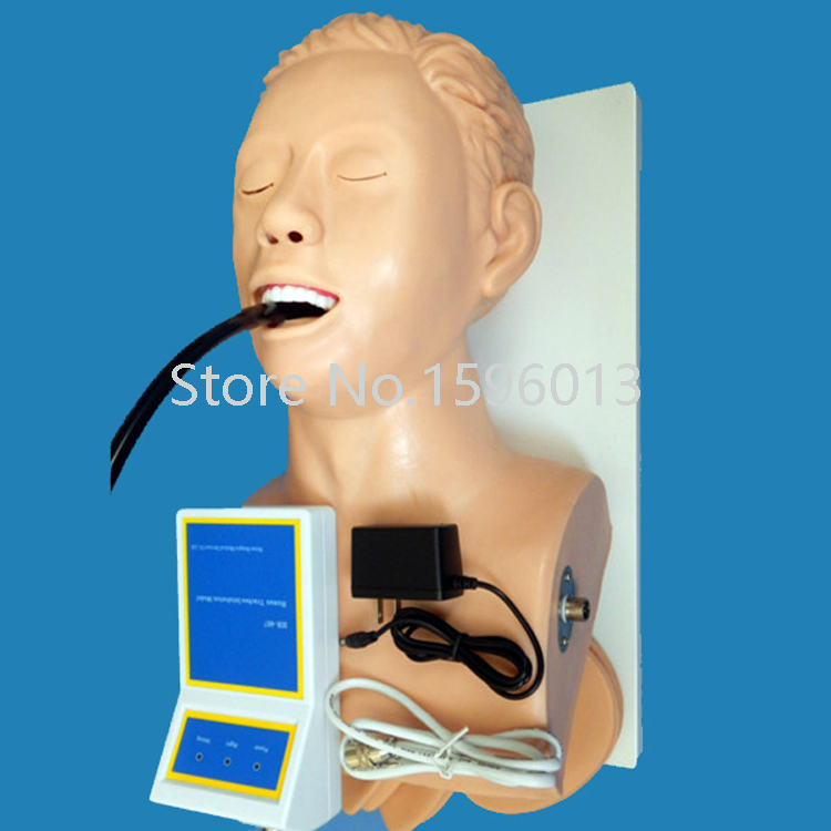 Tracheal Intubation Training Model,Adult Intubation Head,Intubation trainer iso economic newborn baby intubation training model intubation trainer