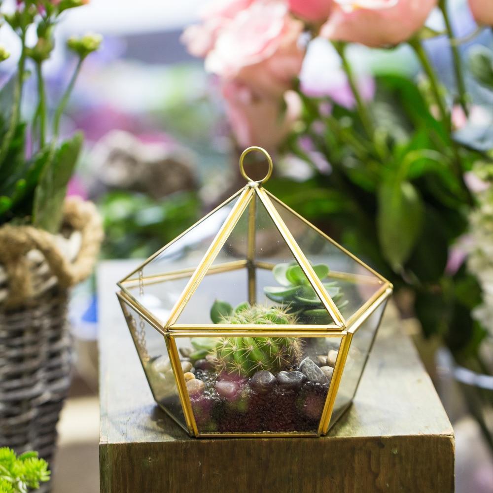 Σύγχρονη Γυαλί Γεωμετρική Terrarium Πέντε πλευρές Επιτραπέζια Πάγκος Succulent Fern Moss Plant Εμφάνιση Πλαίσιο Planter Λουλούδι Pot Terrarium Διακόσμηση