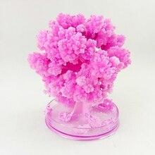 Magic Grow Paper Flower Tree Artificial Sakura Magical Growing Trees Arvore Magica Desktop Cherry Blossom Christmas Kids Toys