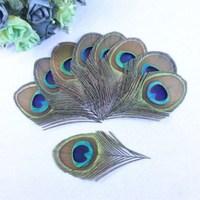 Wholesale!Free shipping,500pcs 8 12 cm feathers peacock eye decoration
