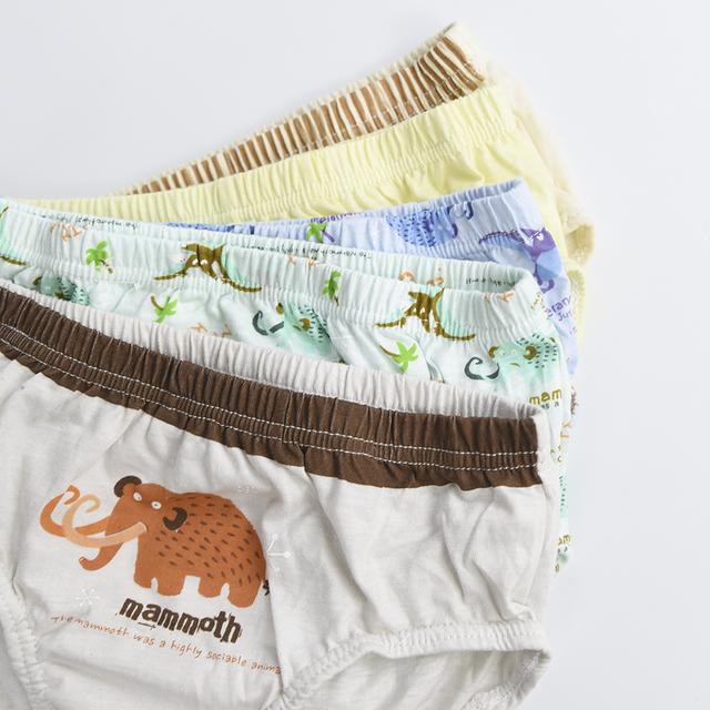 Cotton Boy's Underwear, 5 Pcs Set