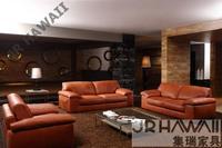 High Quality Leather Sofa Modern Sofa Living Room Sofa Living Room Furniture Home Furniture Feather Sofa